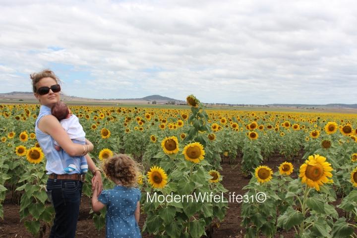Mumma and children sunflowers QLD