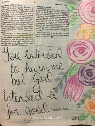 Genesis 50:20 faith bible journal